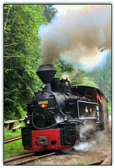 Train des bûcherons (au35) Tags: roumanie train traindesbûcherons valléedelavaser transport bois locomotive fumée nikon d5000