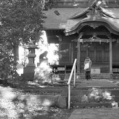 Morning prayer - M.12-40 at 31mm, f/8, cropped (kneo_y) Tags: prayer kokubunji light shadow blackandwhite