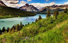 Glacier National Park, Montana, USA (klauslang99) Tags: klauslang nature naturalworld northamerica national glacier park montana landscape mountains grass water lake