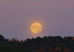 Amanecer lunar-moon (angelalonso57) Tags: canon eos 7d mark ii 70300mm ƒ80 3000 mm 115 100 orange luna moon naranja yellow sky shot full work fotografia amanecer llena lightscape