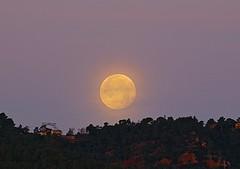 Amanecer lunar-moon (angelalonso4) Tags: canon eos 7d mark ii 70300mm ƒ80 3000 mm 115 100 orange luna moon naranja yellow sky shot full work fotografia amanecer llena lightscape
