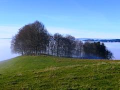 Am Stefanstag in Oberthal(26.12.2018) (Martinus VI) Tags: oberthal arni emmental kanton de canton bern berna berne bernese berner schweiz suisse switzerland suiza svizzera swiss y181226 martinus6 martinus6xy martinus martinusvi