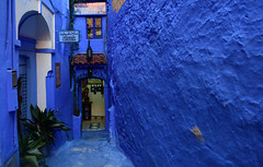 Chefchaouen, Morocco, January 2019 D810 659 (tango-) Tags: chefchaouen morocco maroc 摩洛哥 marruecos марокко المغرب bluecity bluevillage