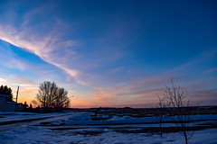 Winters colourful sunset (darletts56) Tags: sky skylight sunset colour orange grey white snow cloud clouds tree trees road roads street field fields pole poles wire wires valley village silhouette black dusk evening sundown saskatchewan canada prairie yellow purple ice colours