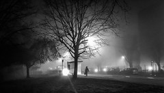 7:00 am Misty morning (ericbeaume) Tags: iphone nb noirblanc noiretblanc nightview mist urban urbain trees bus lights town city ambiance ericbeaume