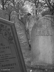 Church Cemetery Study I (siark) Tags: cemetery gravestone churchyard blackandwhite grave nottingham churchrockcemetery graveyard headstone cross tombstone winter epitaph memorial trees decay disrepair monochrome