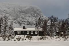 House at Filefjell (hanschristian_nielsen) Tags: norge skiferie winter norway filfjell snow mountain tree birch house sky
