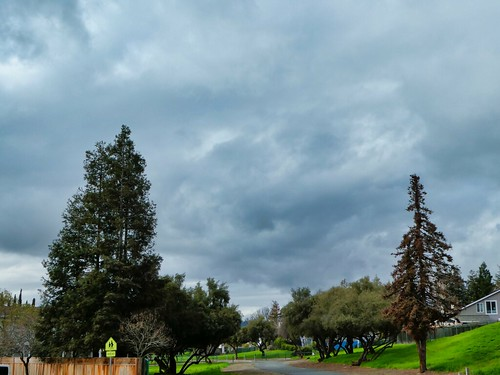 2019-03-07 - Outdoor Photography - Nature - Anything goes