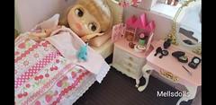 Lovely Pink House (mellsdolls) Tags: blythe dollhouse miniature blythedolldress dolldress handmadedolldress sallyrice rement