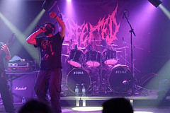 Defeated Sanity 29