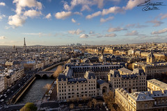 Paris' view from Notre Dame (Ely 968) Tags: paris town city view panorama roofs travel holidays france senna river notredame sky clouds beautiful toureiffel