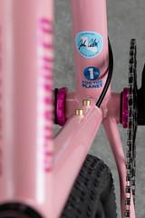 4U0A7683.jpg (peterthomsen) Tags: 1fortheplanet chrisking coveypotter scrambler steel pink nahbs caletti