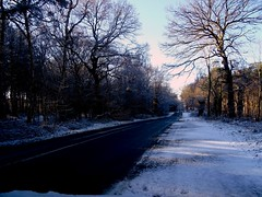 Delamere Forest Road Jan 23Rd 2019 Sony HX60-V (mrd1xjr) Tags: delamere forest road jan 23rd 2019 sony hx60v