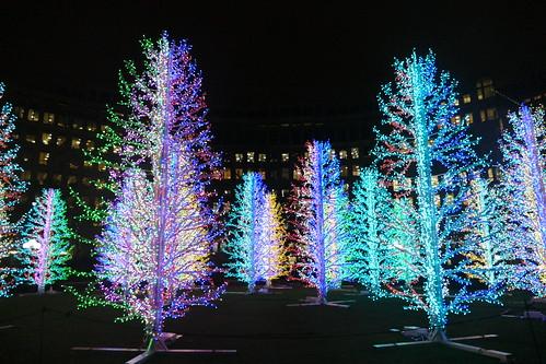'Sasha Trees' by Adam Decolight, Winter Lights 2019