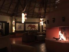 IMG_1495 (suuzin) Tags: masai mara safari