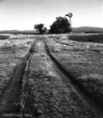 Ruts (Gary L. Quay) Tags: windmill ruts farm agriculture film pyro linhof oregon pacificnorthwest garyquay grass trees darkroom develop largeformat