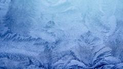 Ice flowers (gitte123) Tags: iceflowers window cold frozen frost winter macro