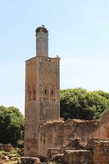 Storks on Minaret, Chellah (Buster&Bubby) Tags: shalla berber mosque chellah minaret almohad phoenecians romanruins sala