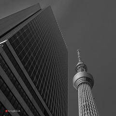 Towers (tripklik) Tags: tokyo tokio edo japan japon