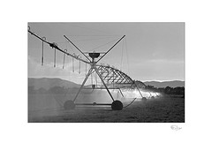 Irrigation (radspix) Tags: canon t90 35135mm tamron adaptall ii f3545 model 40a ilford fp4 plus pmk pyro