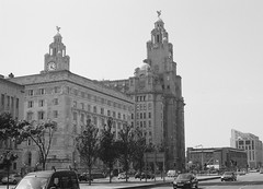 Royal Liver Building (Jim Davies) Tags: liverpool film analogue analog veebotique 35mm konica vx400 expired blackandwhitefilm monochrome chromogenic c41 bw streetphotography street l1 goree royalliverbuilding june 2018 summer summertime