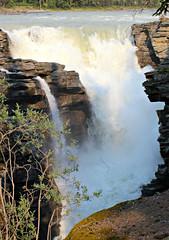 Athabasca Falls (Yesi Santacruz) Tags: canadianrockies nature water athabascafalls alberta canada jaspernationalpark jasper waterfall