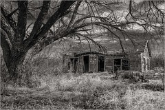 The Protector (A Anderson Photography, over 3 million views) Tags: abandoned mono bw canon sepia