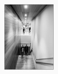 Circulation. (francis_bellin) Tags: escalier exposition andalousie malaga monochrome blackanwhite netb noiretblanc centrepompidou bw 2019 espagne fevrier