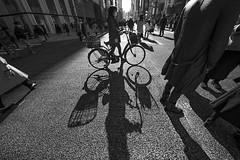 STRANGERS DARKER SIDE (ajpscs) Tags: ©ajpscs ajpscs 2019 japan nippon 日本 japanese 東京 tokyo city people ニコン nikon d750 tokyostreetphotography streetphotography street strangers urban urbanlife walksoflife tokyoscene anotherday monochromatic grayscale monokuro blackwhite blkwht bw blancoynegro blackandwhite monochrome lightshadow shadow strangersdarkerside shadowsoftokyo tokyoshadows
