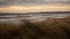 Girdleness Lighthouse (PeskyMesky) Tags: aberdeen lighthouse girdleness beach scotland dof depthoffield landscape sky cloud canon canon5d eos