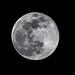 Super Lune du 19 février 2019_1177