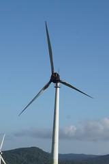 Ravenshoe_20190216_0029 (O En) Tags: wind turbines ravenshoe cows