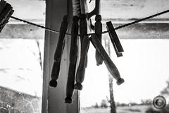 IMG_8227logo (Annie Chartrand) Tags: farmhouse house abandoned ruraldecay illinois calhouncounty antique clothespin laundry americana window monochrome silhouette bw blackandwhite