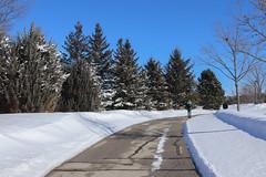 Snow Photos-9
