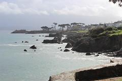 IMG_9781 (mudsharkalex) Tags: california pacificgrove pacificgroveca