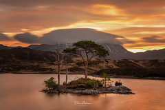 Loch-Assynt-Tree-Island (deanallanphotography) Tags: art adventure anawesomeshot artisticexpression beauty colors clouds expression flickrsbest fab greatbritishlandscape impressedbeauty landscape light lake mountain morning ngc natgeo nature nikon outdoor outdoors photography peaceandquiet peaceful panorama scenic scotland scene scenery travel tree uk view water sunrise