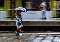 It's Only A Shower (Fermat 48) Tags: stpeterssquare manchester metrolink rain street tramstop umbrella tram station shower platform filming advertisement canon eos 7dmarkii ef24105mmf4lisusm
