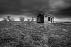 Conata, South Dakota (paccode) Tags: solemn d850 landscape greatplains bushes brush serious quiet abandoned barn monochrome shack grass farm scary forgotten southdakota blackwhite creepy wall unitedstates us
