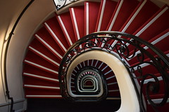Spiral (davidvines1) Tags: