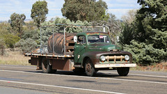 Good FORD Workers (1/2) (Jungle Jack Movements (ferroequinologist)) Tags: 1951 1980 ford freighter d1414 tip dump truck refuse gravel sand soil kenworth highway hauling haulin hume sydney 2019 yass classic historic vintage veteran hcvca vehicle run hp horsepower big rig haul haulage freight cabover trucker drive transport delivery bulk lorry hgv wagon nose semi trailer deliver cargo interstate articulated load ship move roll motor engine power teamster tractor prime mover diesel injected driver cab wheel double b tipper