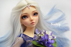 DSC_2164 (sonya_wig) Tags: fairytreewigs wig bjdwig minifeewig bjd bjdminifee minifeechloe handmadedoll bjddoll dollphoto fairyland fairylandminifee minifee chloe bjdphotographycoloringhair