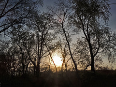 Final Sun Peaking (George Neat) Tags: indian lake park north huntingdon outside westmoreland county pa pennsylvania scenic scenery landscapes georgeneat patriotportraits portraits america rural country