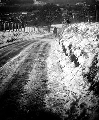 Slippery Lane (Missy Jussy) Tags: slipperylane trevorkerr trev land lancashire landscape path road snow frost frozen blustery wind fence fields village newhey quarry mono monochrome blackwhite bw blackandwhite 50mm ef50mmf18ll ef50mm canon50mm fantastic50mm canon canon5dmarkll canon5d canoneos5dmarkii outdoor outside countryside walk rochdale northwest england greatbritian uk unitedkingdom weather britishweather winter 2019 january