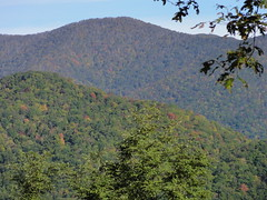 DSC07503 (TerrMys) Tags: northcarolina nc southern appalachians fall autumn october