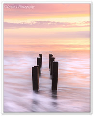 ABC_5337 (Lynne J Photography) Tags: northumberland coast seascapes sunrise water longexposure groynes outfallpipe clouds mono blackwhite pier cambois blyth rocks seatonsluice lighthouse pastel colors dawn light