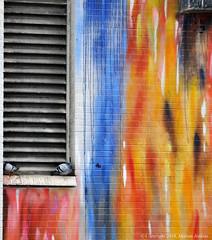 Take shelter (cotton.candy581) Tags: toronto art colours graffiti marianjenkins pigeons grill