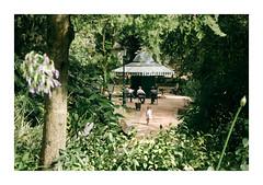 Jardim da Estrela, Lisboa (Sr. Cordeiro) Tags: jardimdaestrela lisboa lisbon portugal jardimguerrajunqueiro estrela jardim park quiosque kiosk rua street panasonic lumix gx80 gx85 14140mm