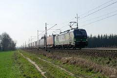 193 262 (PM's photography) Tags: train trainspotting locomotive poland polska rail railway railroad e20 paledzie wielkopolska siemens vectron 193 262