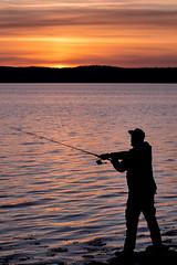 fisherman (englishgolfer) Tags: fisherman sunset silhoutte sweden sverige west coast västkusten bohuslän nikon d7500 tamron 70200mm
