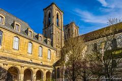 Laon - Jardin du cloitre de l'abbaye Saint-Martin (np7laphotopassion) Tags: aisne hautsdefrance laon